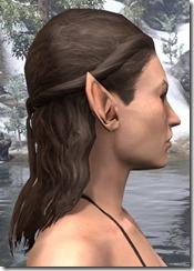 Long Curly Crown Braid 2