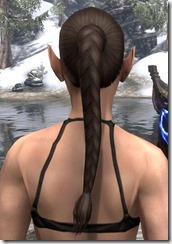Long Hind Braid 3