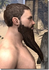Long Patriarch Beard 2
