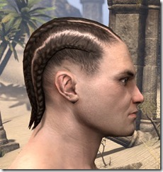 Medium Cornrows 2