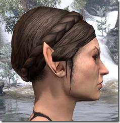Tight Braided Crown 2
