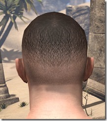 Wrestler's Buzz Cut 3