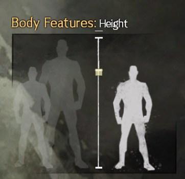 GW2 Height