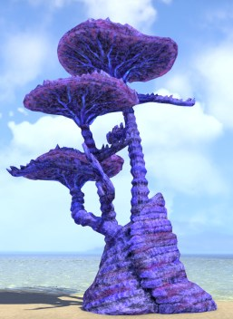 Mind Trap Coral Formation, Trees Capped