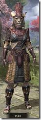 Elder Argonian Heavy - Khajiit Female Front