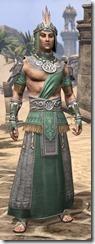 Elder Argonian Homespun - Male Robe Front