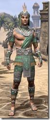 Elder Argonian Homespun - Male Shirt Front