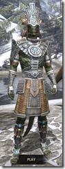 Elder Argonian Iron - Argonian Male Front