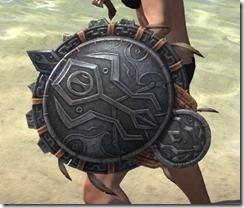 Elder Argonian Maple Shield 2