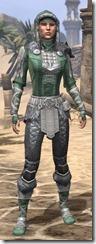 Silver Dawn Homespun - Female Shirt Front