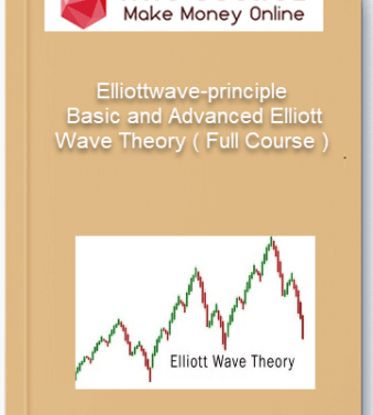 [object object] Home Elliottwave principle     Basic and Advanced Elliott Wave Theory Full Course