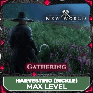 max levelling until 200 harvesting mmopilot thumbnail new