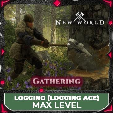 max levelling until 200 logging mmopilot thumbnail