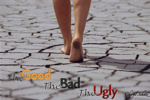 The good the bad and the ugly On the Path blog by Cheryl Schatz