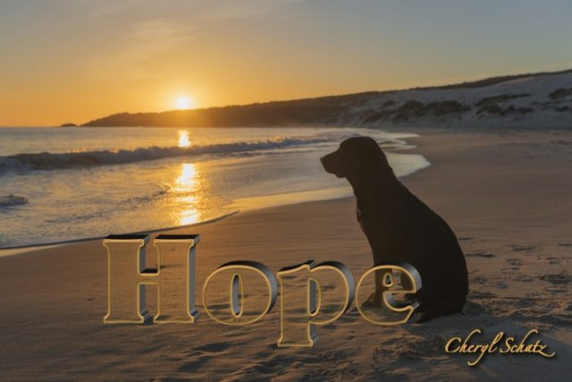 Hope on On the Path blog by Cheryl Schatz
