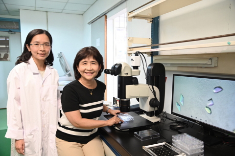 Professor Sun Yuh-Ju of the Institute of Bioinformatics and Structural Biology showing team member Tsai Jia-Yin how to grow a crystal. (Photo: Business Wire)