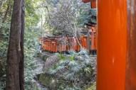 Kyoto-DSC_5795-b-kl