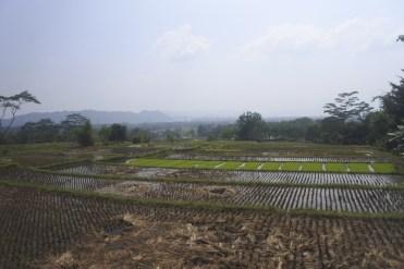 Bandung-DSC_7188-b-kl