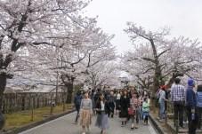 Kanazawa-DSC_6755-b-kl