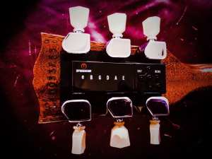 les paul electronic tuners