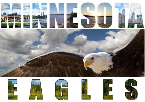 Minnesota Eagles