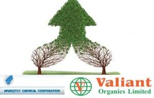 Amarjyot-Valiant-Organics-Consolidation-Grow
