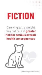 2_Cat2Vet-2021-FactorFiction-Obesity-Social