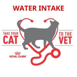 Water Intake (1)