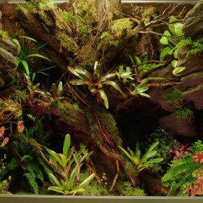 Terrarium plug and play 90/60/75