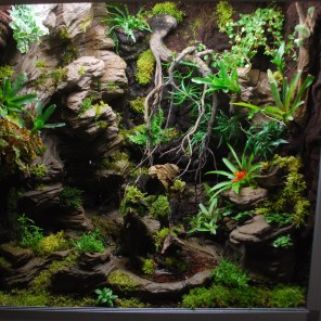 Terrarium plug and play 120x60x100