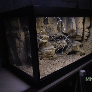 terrarium désertique 90x60x60