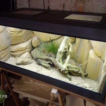 Terrarium Désertique 120x60x60 cm