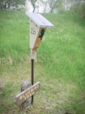 T bluebird Trail with bird