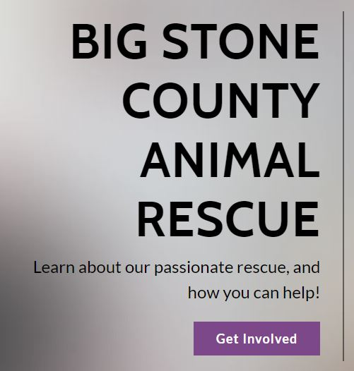Big Stone Animal Rescue