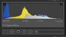 Image Four Histogram
