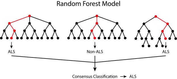 Greig Joilin random forest model