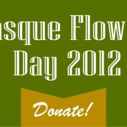 Pasque Flower Day 2012