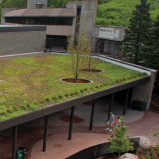 See the wild green roofs at the Minnesota Zoo!