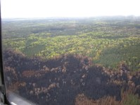 pagami aerial burned area