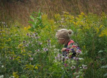 Young girl discovering the prairie