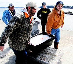 Cape Croker police supervise a group of anglers who gill-netted both lake trout and whitefish from Colpoys Bay. They say they did not catch any sports fish such as Rainbow Trout, which are in their spring spawn. Witnesses claim they were fishing too closely to the Colpoys Creek rivermouth. Submitted photo.
