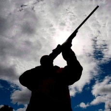 Convicted hunters, anglers owe Ontario $3.5M in unpaid fines