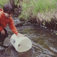 Eco-warming called pervasive threat to key cold water fish in northern Ontario