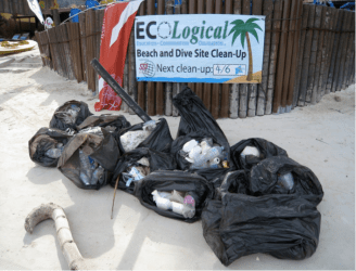 Figure 5. Litter collected from the beach clean-up activity Photo by H.Y. Leong