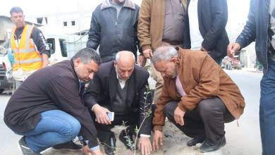 "Photo of الزراعة وبلدية ""النصيرات تطلقان مبادرة غزة خضراء ""2"""