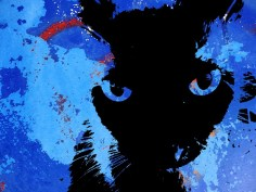 MoArt Urban Cats - Storm 5
