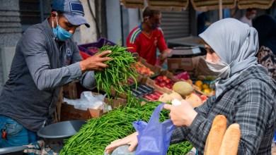 الأسواق مزودة بشكل جيد وأسعار المواد الغذائية في تراجع 6