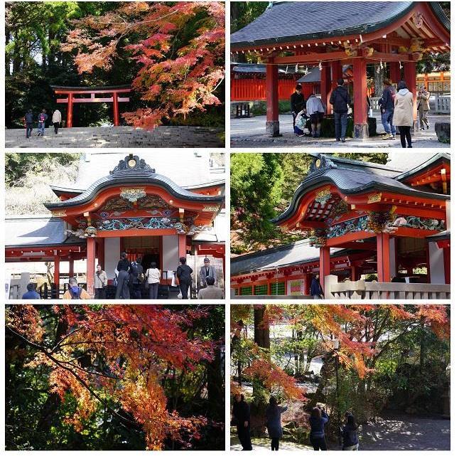 紅葉まぶしい「霧島神宮」秋景色を振り返って