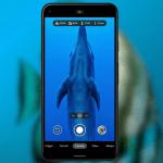 Google visar vad företagets modeller går för när det kommer till att fota under vattnet