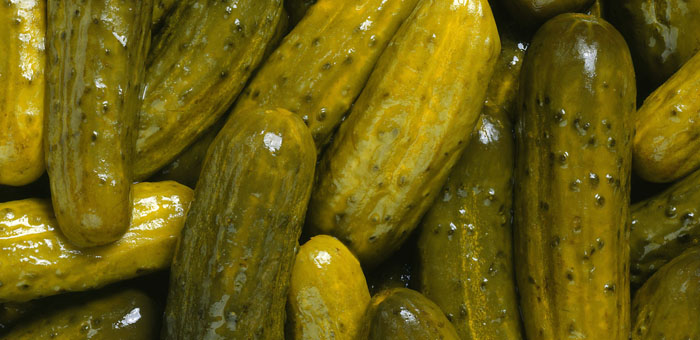Pickle Fun Facts Mobile Cuisine